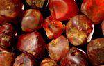 Особенности редкого красного янтаря: украшения, происхождение и свойства