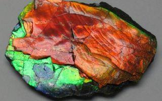 Яркий аммолит: свойства и применение камня изобилия, магия