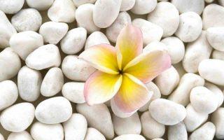 Списки белых камней: ТОП 20 названий ⚪ с описанием, уникальные свойства