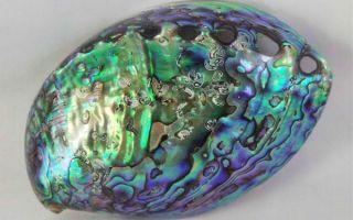Что за камень перламутр: свойства и значение, украшения из магического минерала