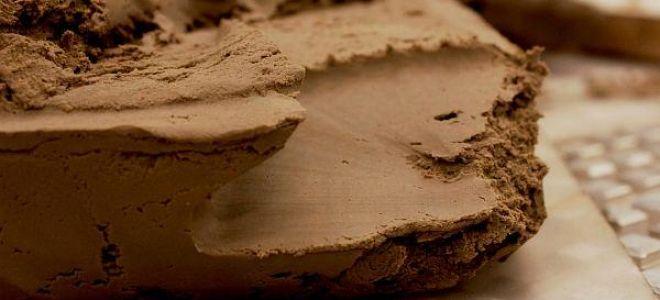 Все об обычной глине: неожиданные свойства и тонкости происхождения, виды