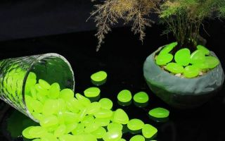 Как сделать светящиеся в темноте камни и какие выбрать при покупке — полезные советы