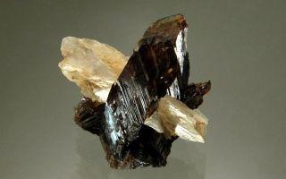 Очаровательный аксинит и роль камня в ювелирном деле — полное описание
