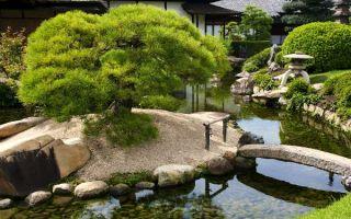 Что такое сад камней: секреты создания декора своими руками и знаменитые сады