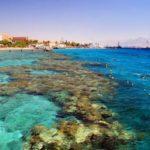 Эйлатский коралловый риф