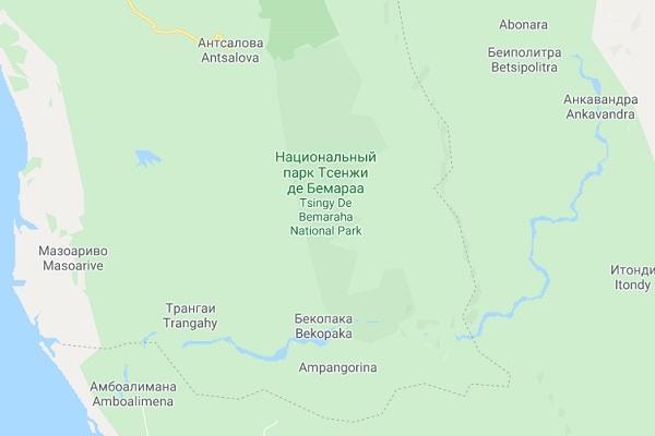 Каменный лес на острове Мадагаскар