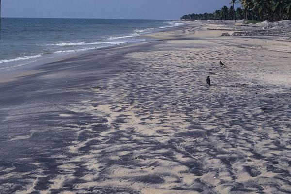 монацитовые пески